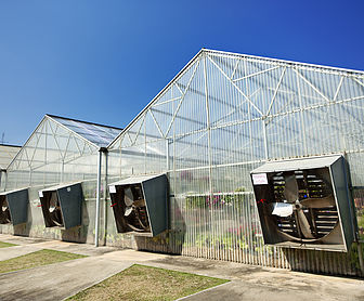Greenhouse under blue sky